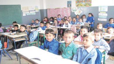 Photo of إنطلاق إنتخابات مجلس المؤسسة و المجلس البيداغوجي بكامل المدارس الإبتدائية