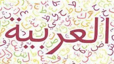 Photo of ندوة القيروان للغة العربية في دورتها الخامسة
