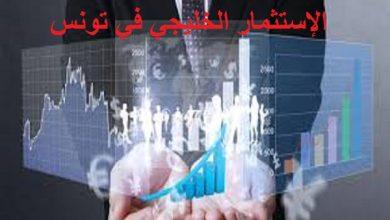 Photo of الإستثمار الخليجي في تونس: 12.6 مليار دينار تونسي وقطر تتصدر قائمة المستثمرين