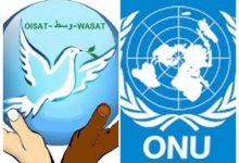 Photo of المنظمة العالمية للتضامن والصداقة والتسامح:دور ريادي وإجتماعي