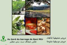Photo of المهرجان الثقافي ببني مطير يحتفي بالسياحة الايكولوجية والإبتكار الحرفي